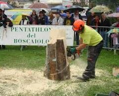 Pentathlon del boscaiolo 2013